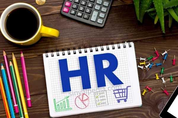 aplikasi HR dalam perusahaan